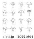Mushroom icons set, outline style 30551694