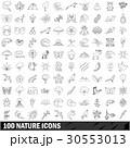 100 100 天然のイラスト 30553013