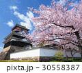 4月愛知 清州城 天守閣 桜 30558387