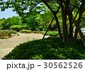 公園 風景 30562526