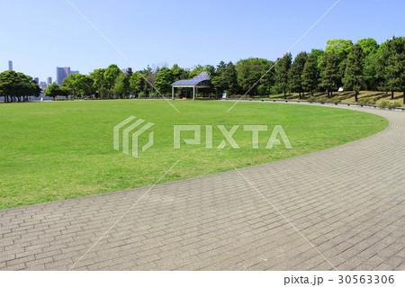 潮風公園 太陽の広場 30563306