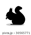 Squirrel rodent mammal black silhouette animal 30565771