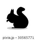 人影 影 シルエットのイラスト 30565771