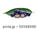 jambolan plum or Java plum isolated on white  30568096