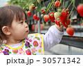 幼児 子供 女児の写真 30571342