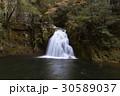 清流 赤目四十八滝 流れ 水 千手滝 30589037
