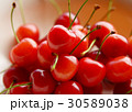 さくらんぼ サクランボ 実 フルーツ 果実 デザート 佐藤錦 30589038