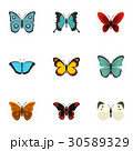 Brightly colored butterfly icons set, flat style 30589329