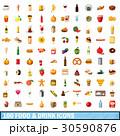 100 100 食のイラスト 30590876