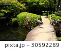 日本庭園 30592289