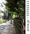 新宿遊歩道公園 30592613