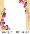 朝顔 簾 蕾のイラスト 30594343