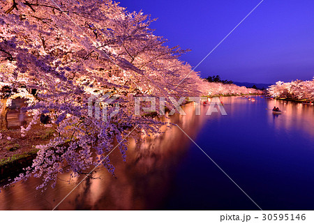 弘前公園のライトアップ 30595146