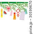 七夕 笹の葉 笹飾りのイラスト 30599670