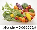 カラフルな野菜集合 30600528