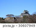 浜松城 曳馬城 天守閣の写真 30607949