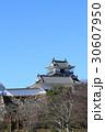 浜松城 曳馬城 天守閣の写真 30607950
