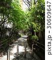 新宿遊歩道公園 30609647