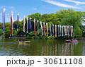 善福寺池 善福寺公園 池の写真 30611108