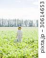 農業女子 農業 農家の写真 30614653
