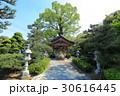 田村神社 お迎え布袋尊 30616445