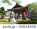 田村神社の狸 30616446