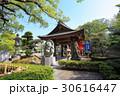 田村神社の狸 30616447