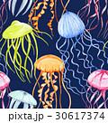 ベクター 抽象的 くらげのイラスト 30617374