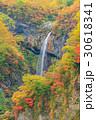 新潟妙高_紅葉の惣滝 30618341