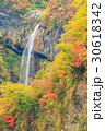 新潟妙高_紅葉の惣滝 30618342