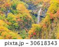 新潟妙高_紅葉の惣滝 30618343