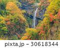 新潟妙高_紅葉の惣滝 30618344