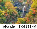 新潟妙高_紅葉の惣滝 30618346