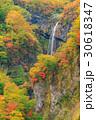 新潟妙高_紅葉の惣滝 30618347