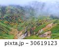 長野_志賀高原の紅葉 30619123