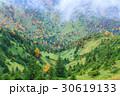 長野_志賀高原の紅葉 30619133