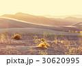 冒険 砂漠 砂丘の写真 30620995