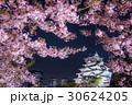 大阪城公園 西の丸庭園 桜 30624205
