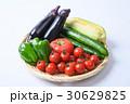 夏野菜 30629825