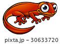 Newt or Salamander Cartoon Character 30633720