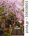 熊野若王子神社(京都) 30638603