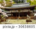 熊野若王子神社と桜(京都) 30638605