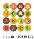ベクター ベジタブル 野菜のイラスト 30646413