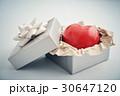 プレゼント BOX ボックスの写真 30647120