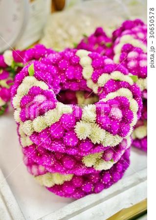 タイ、バンコク花市場で撮影した千日紅(センニチコウ)の花数珠 30650578