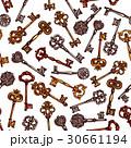 鍵 パターン 柄のイラスト 30661194