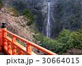 那智の滝と桜01 30664015