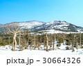 蔵王 雪山 青空の写真 30664326