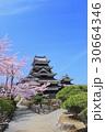 松本城 サクラと道 30664346