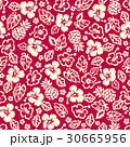 花柄 ハイビスカス パイナップルのイラスト 30665956